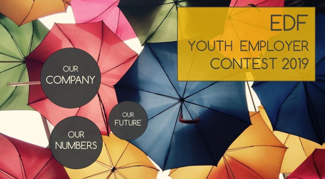 EDF_Youth_Employer_Contest_Prezi.PNG
